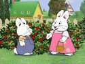 Max and Ruby berry bushes