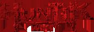 Huntik-wordmark