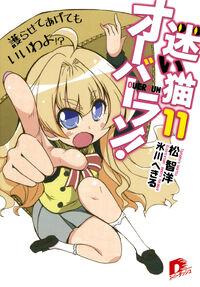 Light Novel 11