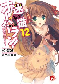 Light Novel 12
