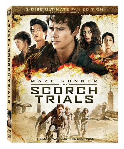 File:Thescorchtrialsdvd.jpg