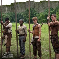 Gladers <a href=