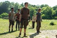 Gally and gladers