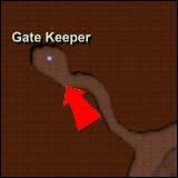 NPCGate Keeper2