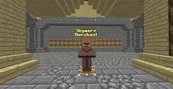 Skywars Merchant2