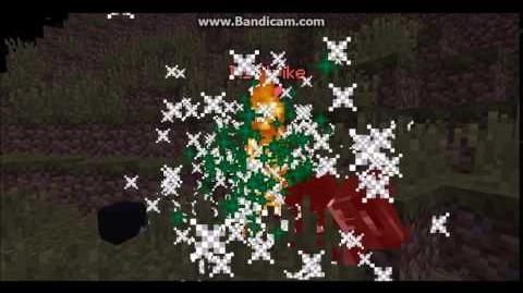 Firework Death on MCCentral