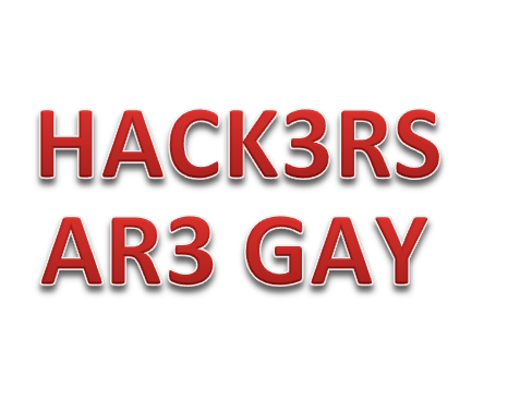 File:HACK3RS AR3 GAY.png
