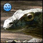 Reptile Lover