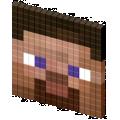 Steve 3d
