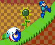 Sonicpic4