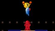 Pac-hydrant