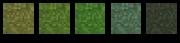 Grass Colors