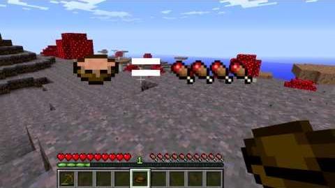 Minecraft Blocks and Items Mushroom Stew