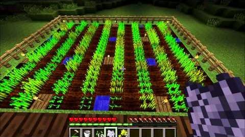 Minecraft Gameplay Mechanics Wheat Farming