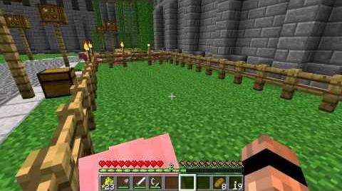 Minecraft Mobs Pigs