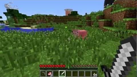 Minecraft Blocks and Items Porkchop