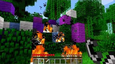 Minecraft Blocks and Items Flint and Steel