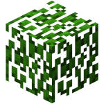 Leaves Oak