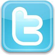 Twitter logo 300x300