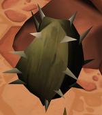 Cactus in game example