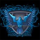 File:Runehawk logo.jpg