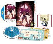 DVD Volume 6 Merchandise