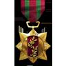 Distinguished Service Medal.png
