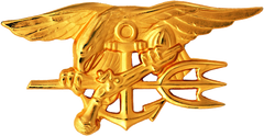 Insignie US Navy SEALs