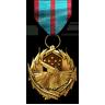 Combat Versatility Medal.png