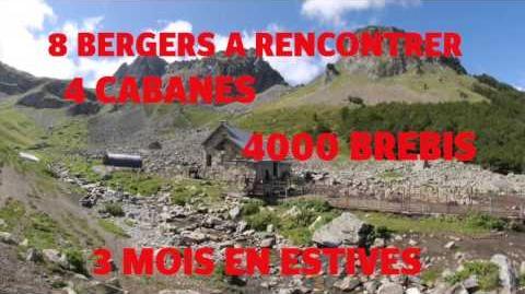 Bande -annonce du webdocumentaire Faire la montagne de Sonia Moumen