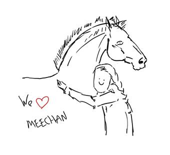 Meekh