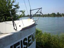 Rhein-03