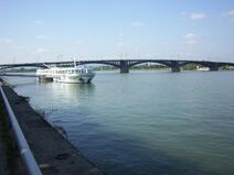 Rhein-24