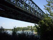 Rhein-11