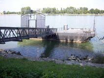 Rhein-22