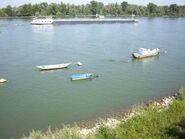Rhein-02