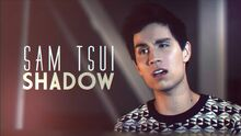 Sam Tsui Shadow