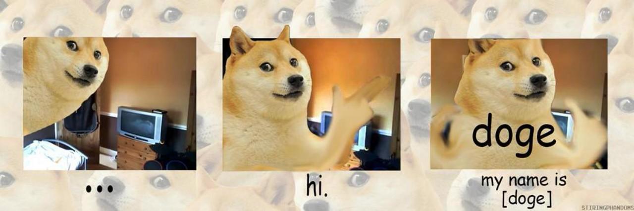 Dan doge