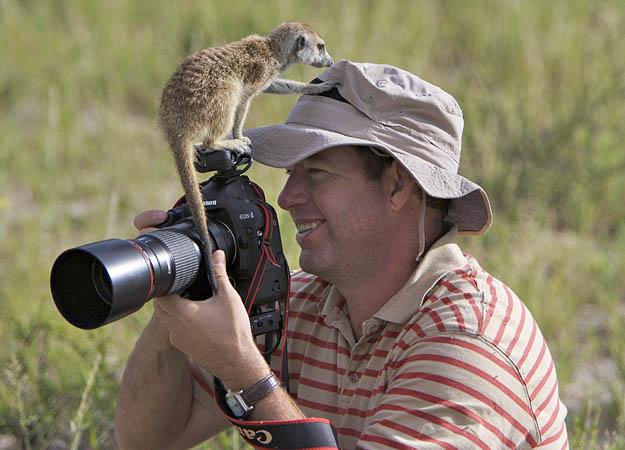 File:A curious Aztec named Alonzo investigates photographer Heinrich Van Den Berg..jpg
