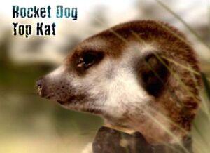 Rocket Dog's Intro