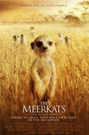 File:The Meerkats.jpg