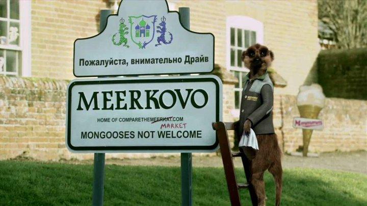 Compare the Meerkat | Meerkats Wiki | FANDOM powered by Wikia