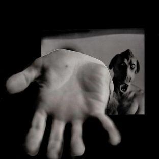 Fingerprincepromo