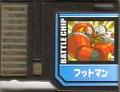 BattleChip787