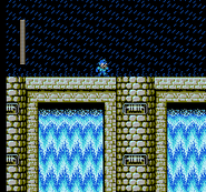 MM4 Toad Man Stage