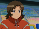 Bit parts in the MegaMan NT Warrior anime