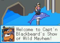 BlackbeardAquariumMayhemBN6