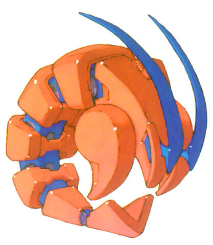 File:Sand shrimpolin.jpg