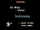Mega Man:Dr. Wily Visits Indonesia