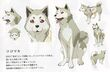 P3M concept artwork of Koromaru